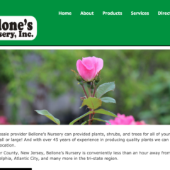 Bellone's Nursery
